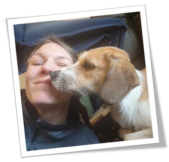 Startbild Tierphysioblog