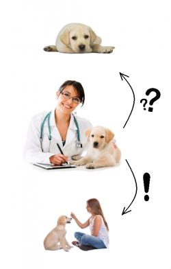Ursache und Therapie
